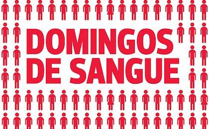 Domingo é dia da semana em que mais se mata em Salvador
