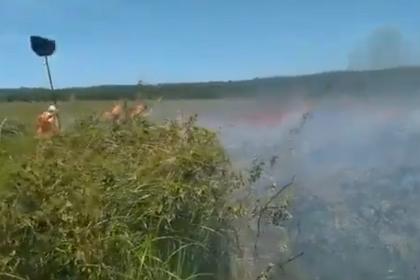 Incêndio em Arraial D'Ajuda já queimou 8km² de vegetação nativa e dura quase uma semana