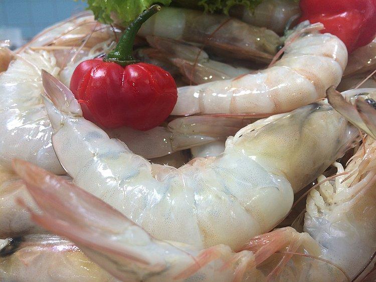 Produção de camarão na Bahia despenca e moqueca passa a ser 'importada'