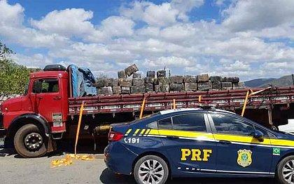 Carga com mais de 3 toneladas de maconha é apreendida na Bahia