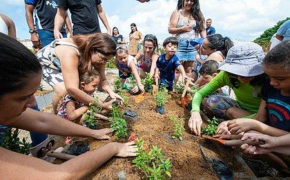 Semana do Meio ambiente terá feiras e oficinas em Salvador; veja programação