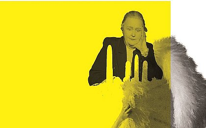 Colagens de Quintino Andrade com Creative Commonses