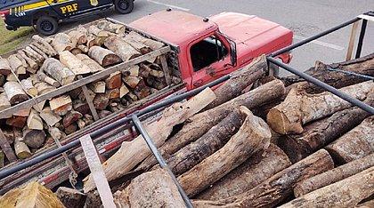 PRF apreende carregamentos de madeira sem licença ambiental