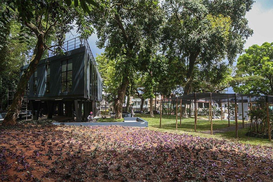 Jardim Botânico de Salvador volta a funcionar para passeios e pesquisas