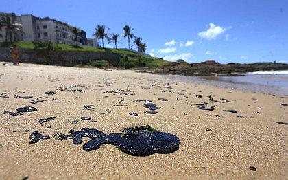 Praias de Salvador tiveram 47 toneladas de óleo removidas nesta quinta (17)