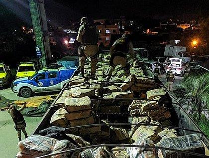 Mais de 1,2 tonelada de maconha é apreendida na zona rural de Itabuna