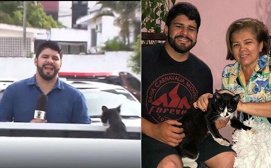 Gato que interrompeu gravação é adotado pela tia do repórter: 'Feliz' - Jornal Correio