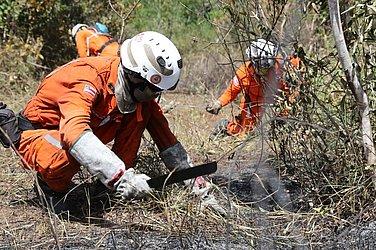 Equipe de bombeiros militares atuam no combate ao incêndio da Chapada Diamantina