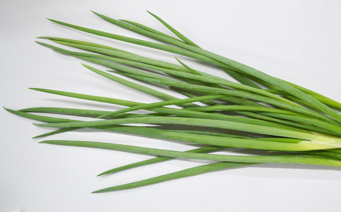 Cebolinha Corte as folhas e plante a parte branca. Rende muito, cresce rápido. Precisa de rega diária e solo bem drenado. Use em saladas e temperos.