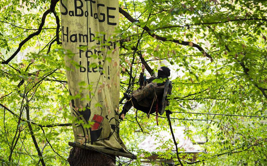 """Um ativista ambiental ocupa participa de manifestação pela recuperação da floresta de """"Hambacher"""" que vem sendo utilizada para a retirada de carvão marrom."""