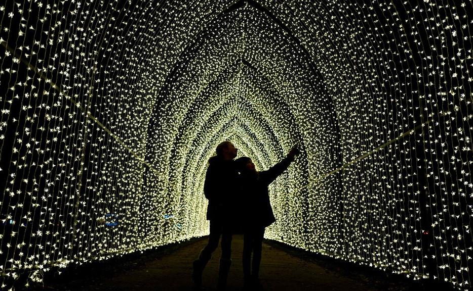 """Prévia das instalações luminosas que serão exibidas no """"Natal no Kew Gardens"""", em Londres."""