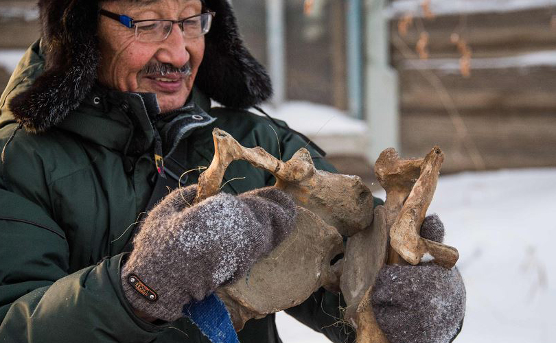 Prokopy Nogovitsyn mostra parte de um esqueleto de mamute no quintal da sua casa na região norte da Sibéria. Ossos de mamute são comuns em Yakutia, uma região coberta pelo permafrost, que age como um freezer para fauna pré-histórica.