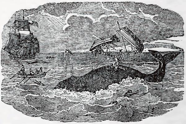 Ilustração de Thomas Teller em Stories About Whale-Catching, datada de 1845